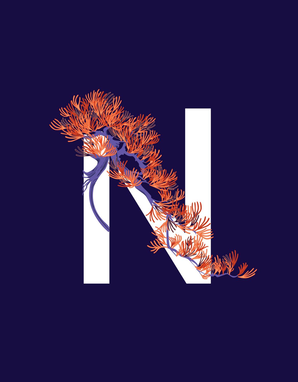 BonsaiT-Letter-3