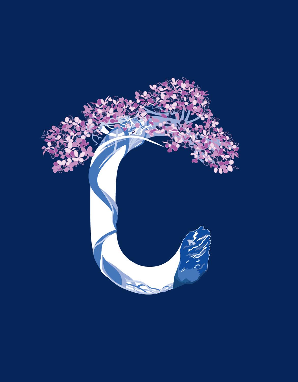 BonsaiT-Letter-6